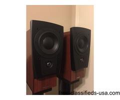 Dynaudio Confidence C1 PLATINUM Rosewood Speaker