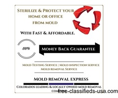 Sterilize and protect your home from mold infections