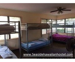Make Your Accommodation Peaceful in Waikiki With Seaside Hawaiian Hostel