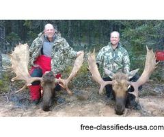 Manitoba Moose Hunting