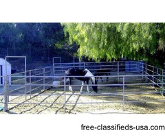 Horse Boarding 36 ft x 36 ft Corrals $160 With Hay
