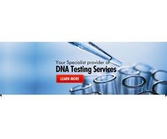 Drug Testing Service
