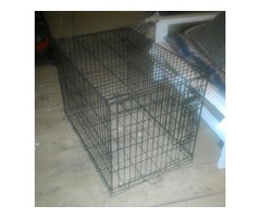 LARGE DOG CRATE !