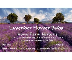 FREE gift when Ordering Culinary Lavender Flower Buds now!
