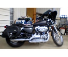 Harley  Davison 1200cc for sale
