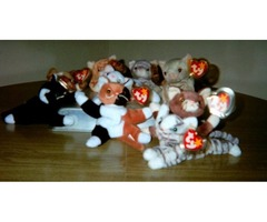 I have a collection of Ty Retired Beanie Baby Cats I am selling