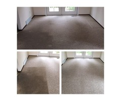 Renton First Class Carpet Cleaner - 253-520-6788