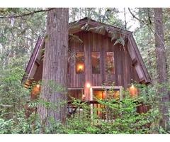Cabin #8 - SAUNA, BBQ, PETS OK, WIFI, FIREPLACE, SLEEPS-6