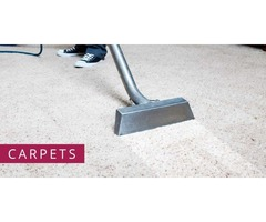 Odourless Carpet Cleaning Service Mercer Island