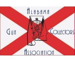 AGCA Summer Gun Show