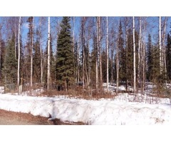 Beautiful 2.18 acre parcel (LOT 3)