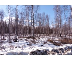 Beautiful 2.18 acre parcel (LOT 4)