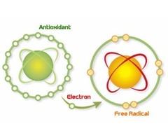 Benefits of Antioxidants in Alkaline Water