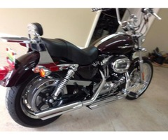 2006 Harley Davidson Motorcycle 1200 XL Custom