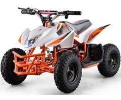 Authentic 350W ELECTRIC ATV 24V