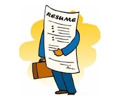 Professional Resume $20