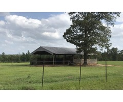 The property features 2 large 8 stall horse barns