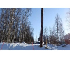 10 ACRES IN WILLOW