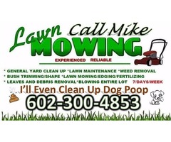 I do Yard Clean Up's & or Dog Poop Removal