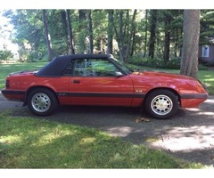 1986 Ford Mustang GT | free-classifieds-usa.com