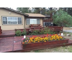 Big Bear Cabins With Jacuzzi For Rent