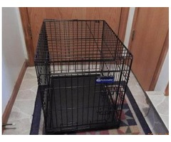 Wire Pet Cages