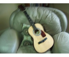 Guitar First Act Discovery FG134