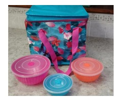 INSULATED LUNCH BAG TOTE & 3 BOWLS W/LIDS-NEW