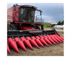 2013 Cepello 1222 Corn/Chopping Head For Sale