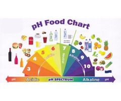 Can You Follow The Alkaline Diet?