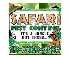 Commercial Pest Control Tampa FL - Signs you need to check out