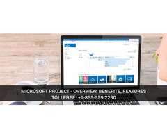 Benefits of Microsoft Project Management Tool