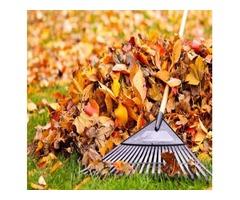 Fall clean ups and organic fertilizing