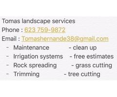 Tomas landscape services