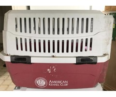 Dog cage, Airline Approved Am Kennel Club
