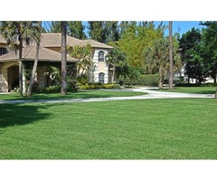 Landscaping & Property Enhancement