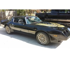 1979 Pontiac Trans Am New PaintDecals