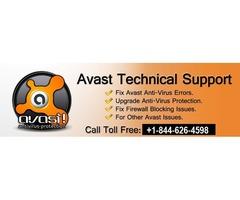 Avast Antivirus Customer Support Phone Number