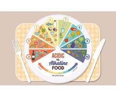 The Basics of Alkaline Diet