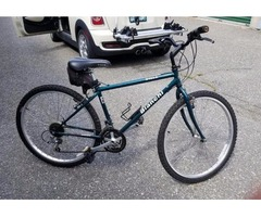 Biaci bike for sale