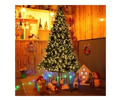 CHRISTMAS TREE HOME DELIVERY AT YOUR DOORSTEP 24/HOURS