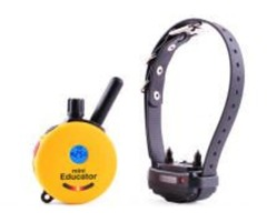 Vibration and shock collars for small dogs aid in training sessions! Buy now | free-classifieds-usa.com