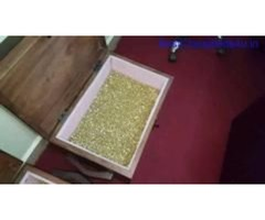 Gold Nuggets for sale in South Africa +27734187430