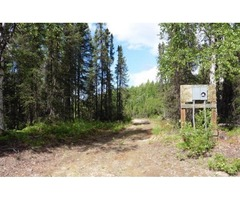 Awesome buildable 10 acre lot near Talkeetna