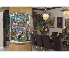 Contact us for Aquarium and Maintenance Services in Deerfield Beach