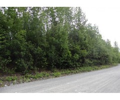 The perfect piece of land .81 acres