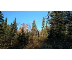 1 Acre of Beautiful Alaska Property Near Fishing