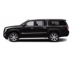 park ridge limo service, Des Plaines luxury limo service