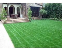Olson Lawn and Garden