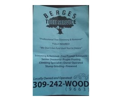 Professional and Affordable Tree Service